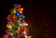 Christmas firtree Stock Photos