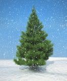 Christmas firtree during snowfall Stock Image