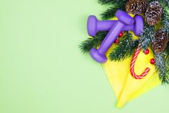 Free Christmas Fitness. Healthy And Active Lifestyles Greeting Card Concept. Purple Dummbbells, Yellow Ruubber Band, Candy And Fir-tree Royalty Free Stock Photography - 201530067