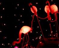 christmas flamingo Στοκ Φωτογραφία