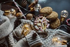 Chocolate or cocoa with marshmallow, cookies, candy and the garland on a dark background. royalty free stock images