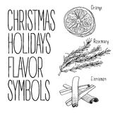 Christmas flavors illustration Stock Image