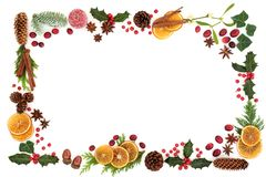 Christmas Flora and Food Background Border Royalty Free Stock Photos