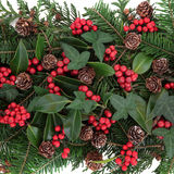 Christmas Flora Royalty Free Stock Photo