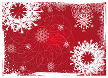 Christmas floral background. Grunge paint christmas floral background,  illustration in 5 color version Stock Photos
