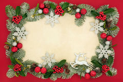 Christmas Floral Background and Decorations Stock Image