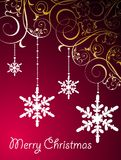 Christmas floral background with snowflakes Stock Photos
