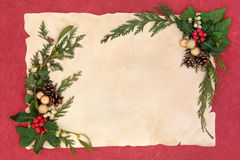 Christmas Floral Border Royalty Free Stock Photos