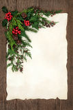 Christmas Floral Border Royalty Free Stock Images