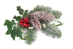 Christmas Floral Display Royalty Free Stock Images