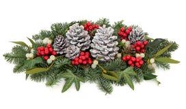 Christmas Floral Display Stock Photos