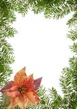 Christmas floral frame Royalty Free Stock Photo
