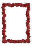 Christmas floral frame Stock Photos