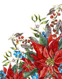 Christmas floral greeting card with poinsettia Royalty Free Stock Image