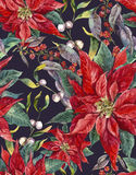 Christmas floral seamless pattern with poinsettia Stock Images
