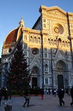 Christmas in Florence, Christmas tree in Piazza del Duomo in Florence with the Cathedral in the background. Italy royalty free stock photos