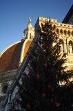 Christmas in Florence, Christmas tree in Piazza del Duomo in Florence with the Cathedral in the background Stock Images