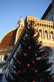 Christmas in Florence, Christmas tree in Piazza del Duomo in Florence with the Cathedral in the background Stock Photos