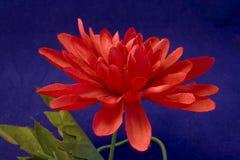 Silk flower. A single silk flower Royalty Free Stock Photo