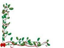 Christmas flower Stock Image