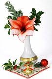 Christmas flower Stock Images