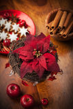 Christmas flower with cookies Royalty Free Stock Images