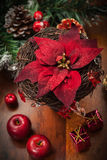 Christmas flower with decoration Stock Photos