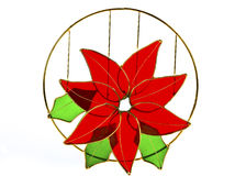 Christmas Flower, Red Poinsettias with green glass Stock Images