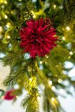 Christmas flower Stock Photography