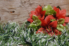Christmas flower wooden backdrop Stock Photo
