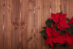Christmas flower on wooden background. Stock Photography