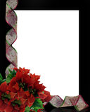 Christmas Flowers Border. Image and illustration composition for Christmas card, background or frame with copy space Royalty Free Stock Photos