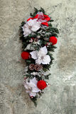 Christmas flowers Stock Image