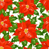 Christmas flowers seamless background Royalty Free Stock Images