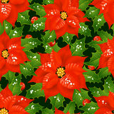 Christmas flowers seamless background Stock Images