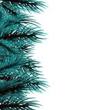 Christmas fluffy tree template. Realistic Merry Christmas branch blue pine tree template. Xmas mock up vector illustration. Isolated fir banner background. Happy Royalty Free Stock Image