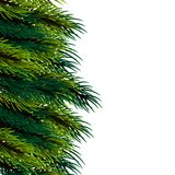 Christmas fluffy tree template. Xmas mock up conifer vector illustration. Isolated fir banner background. Happy new Year poster frame decoration. Festive Stock Photo
