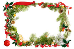 Christmas foliage & ribbon frame Stock Images