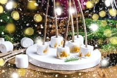 Christmas Food Concept Toasted Marshmellow on Sticks on Wooden Tray Wooden Background Cones Wicker Picnic Basket Blanket Fir branc Stock Image
