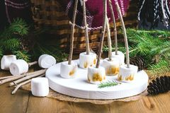 Christmas Food Concept Toasted Marshmellow on Sticks on Wooden Tray Wooden Background Cones Wicker Picnic Basket Blanket Fir branc Stock Photos