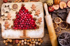 Christmas food. Ingredients for cooking Christmas baking, top vi. Christmas food. Ingredients for cooking Christmas baking: fir tree made from frozen cranberries Royalty Free Stock Photography