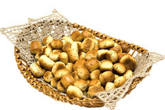 Christmas food on white background Royalty Free Stock Photography