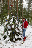 Christmas in forest Stock Photography