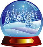 Christmas forest. Vector snow globe with a christmas forest within Stock Photos