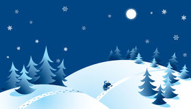 Christmas forest Stock Image
