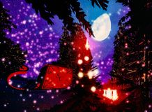 Christmas forest Royalty Free Stock Photos