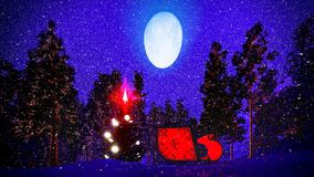 Christmas forest Stock Photography