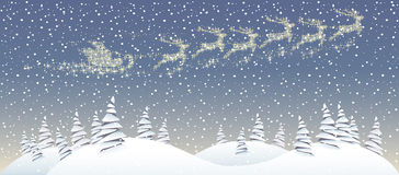 Christmas forest Royalty Free Stock Photography