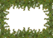 Christmas frame. Frame of pine branches over white royalty free stock images