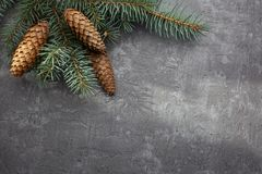 Christmas frame on the background of the Christmas tree, New Year theme. stock photo